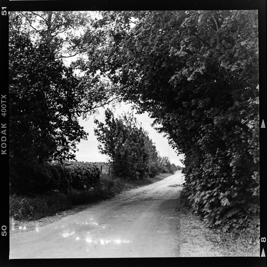 Kodak Tri-X 400 - Feldweg