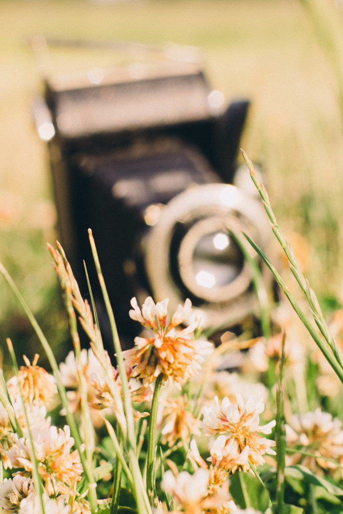 Voigtländer Bessa in der Wiese – Sie gibt ein tollen Hintergrund, was für ein schickes Stück