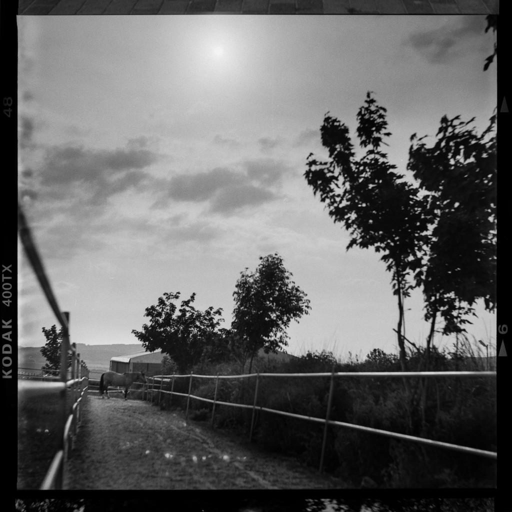 Kodak Tri-X 400 – Erster Test für den Dynamik-Umfang. Aufnahme digital bearbeitet