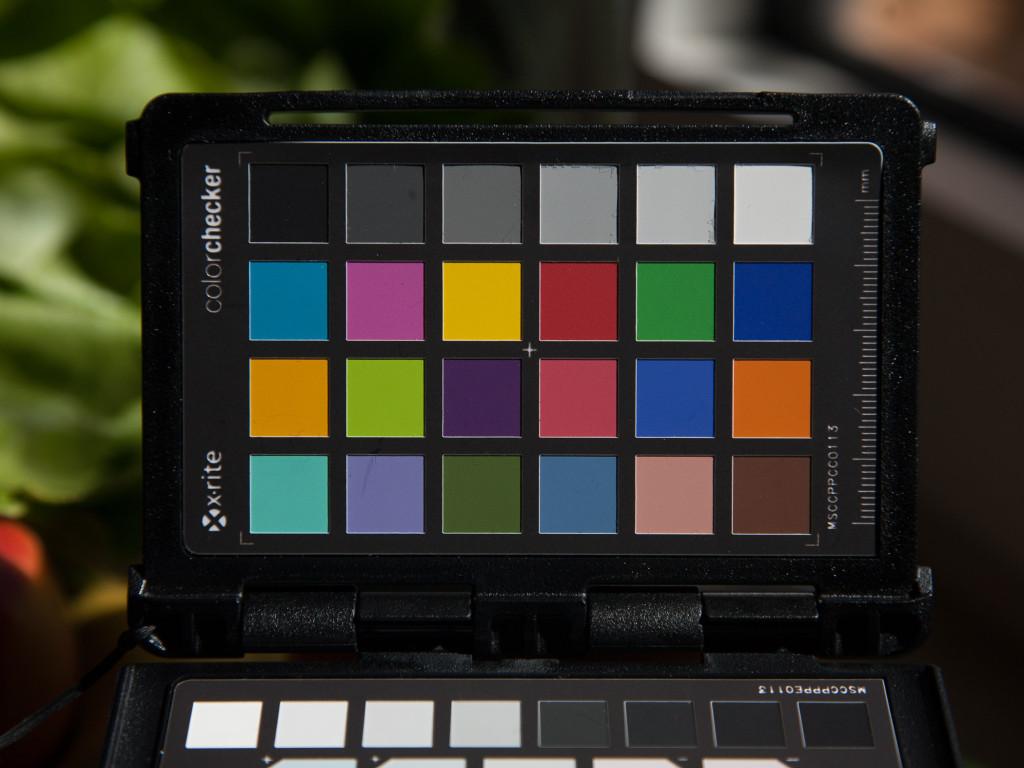 EOS 5D, Weißabgleich Sonne. Entwicklung Adobe Standard