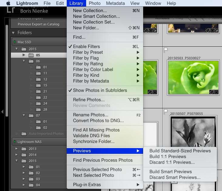 SmartPreviews können für ausgewählte Fotos erstellt werden. Alternativ kann man dies auch direkt beim Import für alle Bilder machen, was für mein Konzept aber nicht sinnvoll wäre