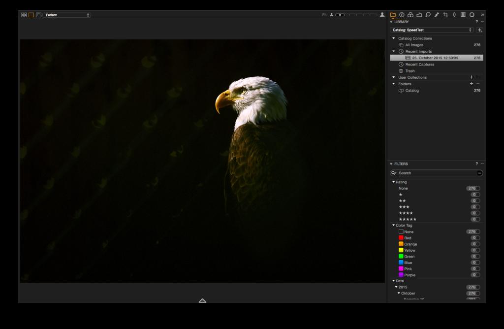 Capture One Pro 8 – Vollbildmodus mit Viewer und Toolbar