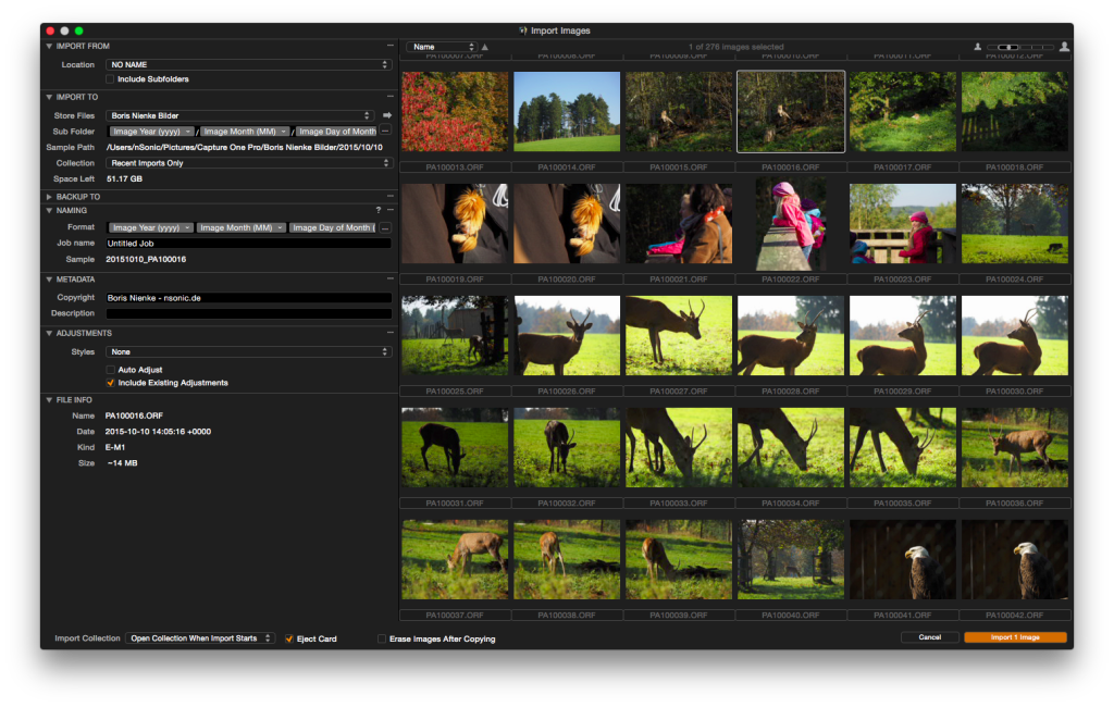 Capture One Pro 8 – Import-Dialog.