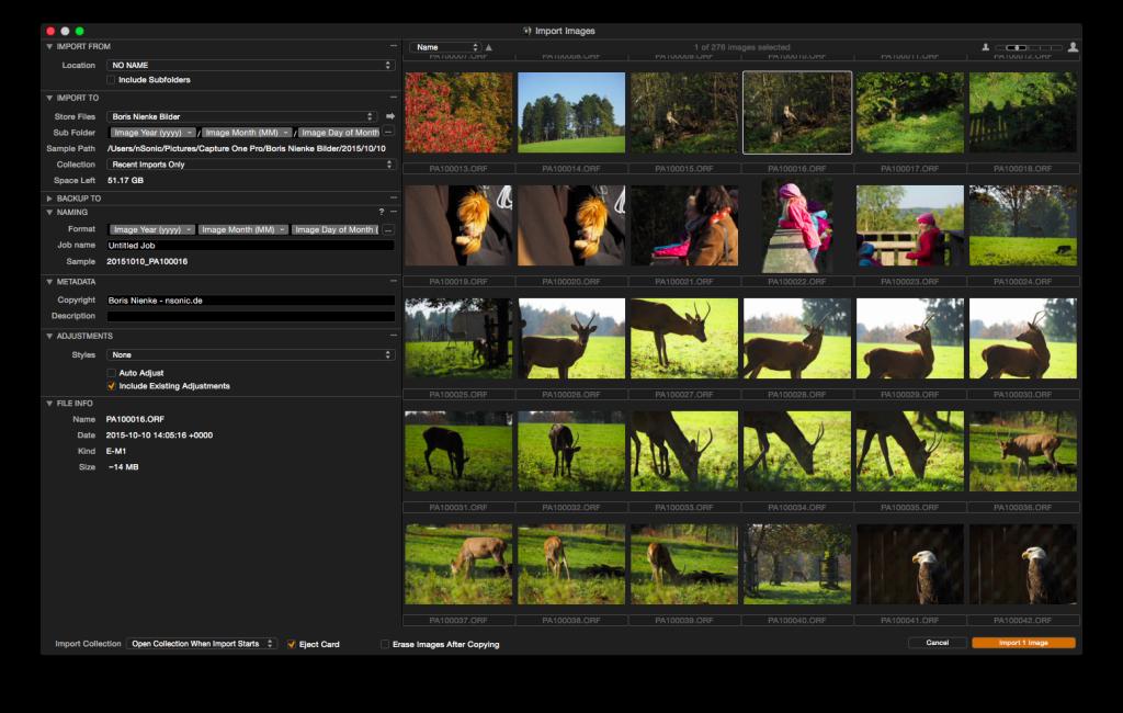 Capture One Pro 8 – Import-Dialog.