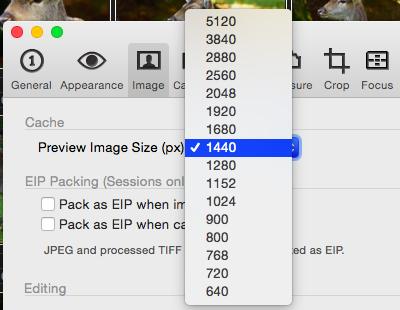 Bei Capture One Pro 8 gibt es keine Möglichkeit für 1:1-Vorschauen. Die Previews helfen nicht beim Zoom