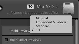 """Lightroom – Beim Import kann man wählen, welche Previews gerechnet werden sollen. """"Standard"""" bezieht sich auf die Katalog-Einstellungen, 1:1 hilft beim Zoom"""