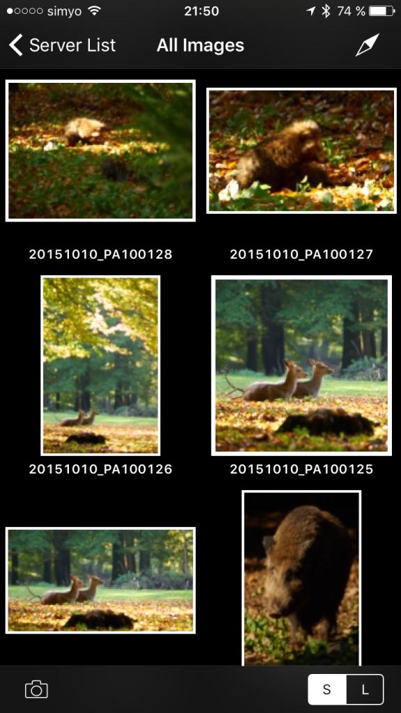 Capture Pilot – Bilder werden so gezeigt, wie sie zugeschnitten wurden (im Gegensatz zu Capture One Pro 8, wo sie mit einem Overlay gezeigt werden)