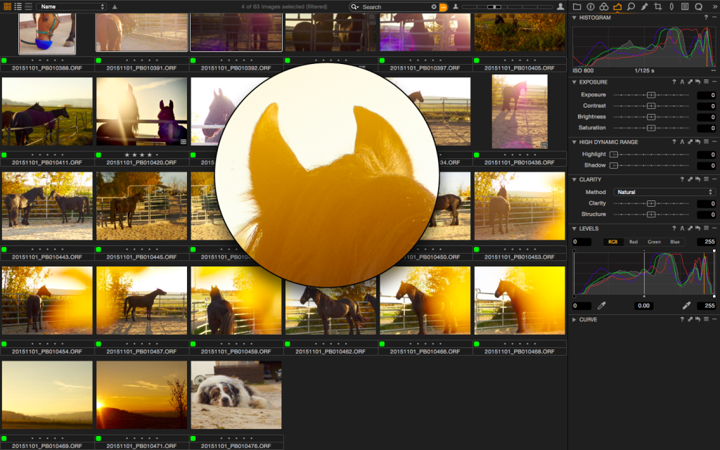 Das Lupen-Tool funktioniert nicht nur im Viewer sondern auch im Browser. Durchaus praktisch.