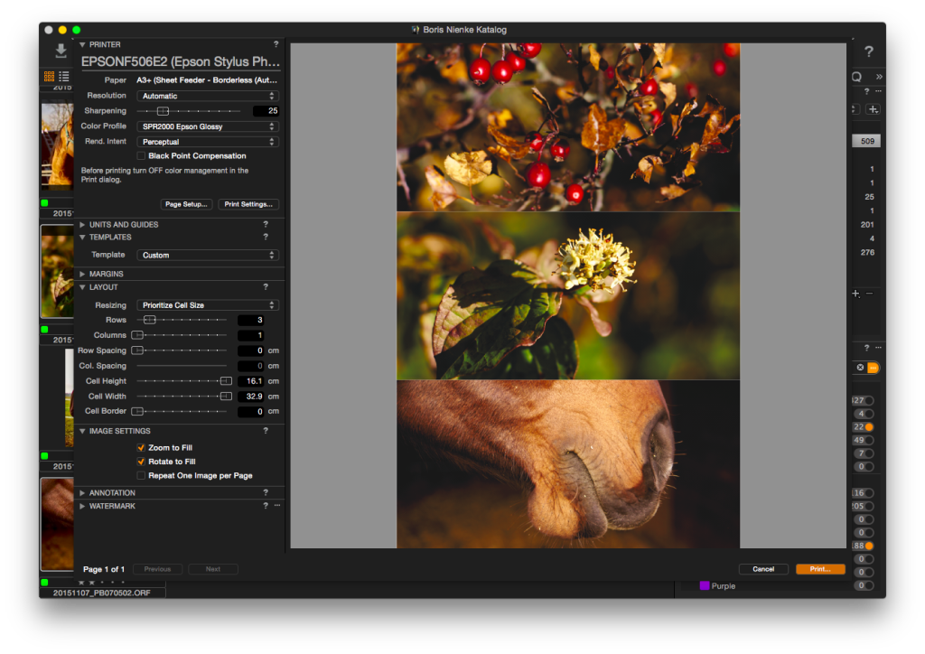 Capture One Pro 8 – Drucken, drei Bilder untereinander – Zoom-to-Fill