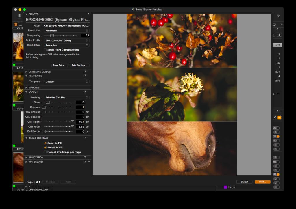 Capture One Pro 8 – Drucken, drei Bilder untereinander – Zoom-to-Fill