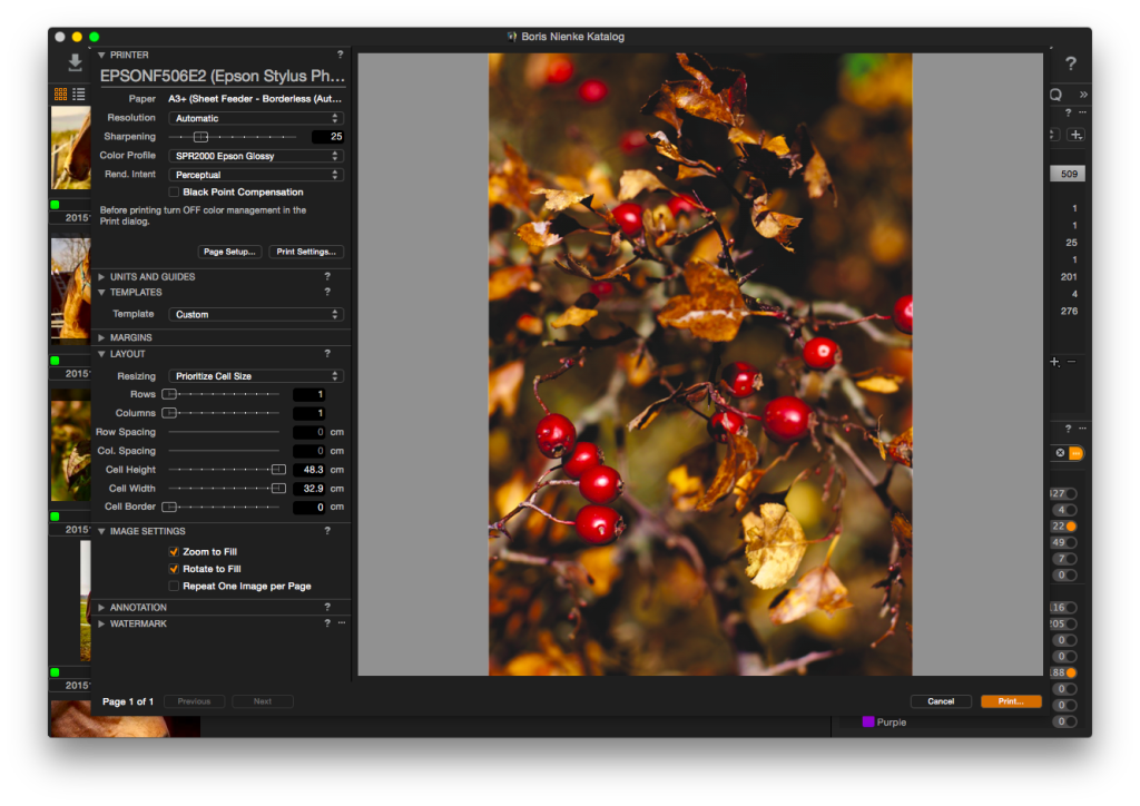 Capture One Pro 8 – Drucken, ein Bild auf eine Seite, Zoom um die Seite auszufüllen – Verschieben des Bildes nicht möglich