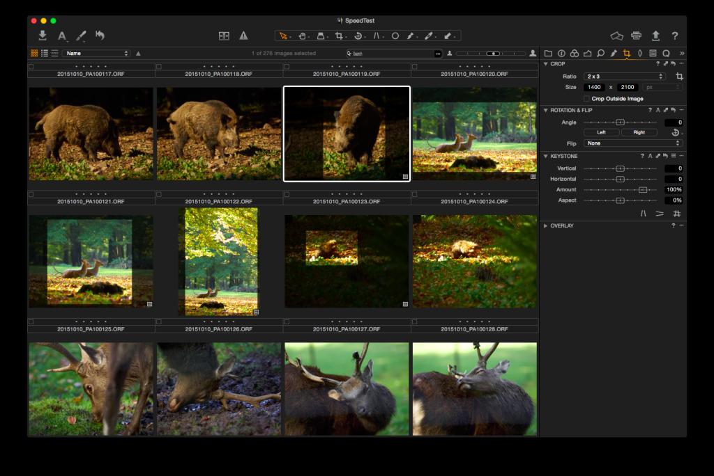 Capture One Pro 8 – Browser mit stärker abgedunkelter Crop-Darstellung