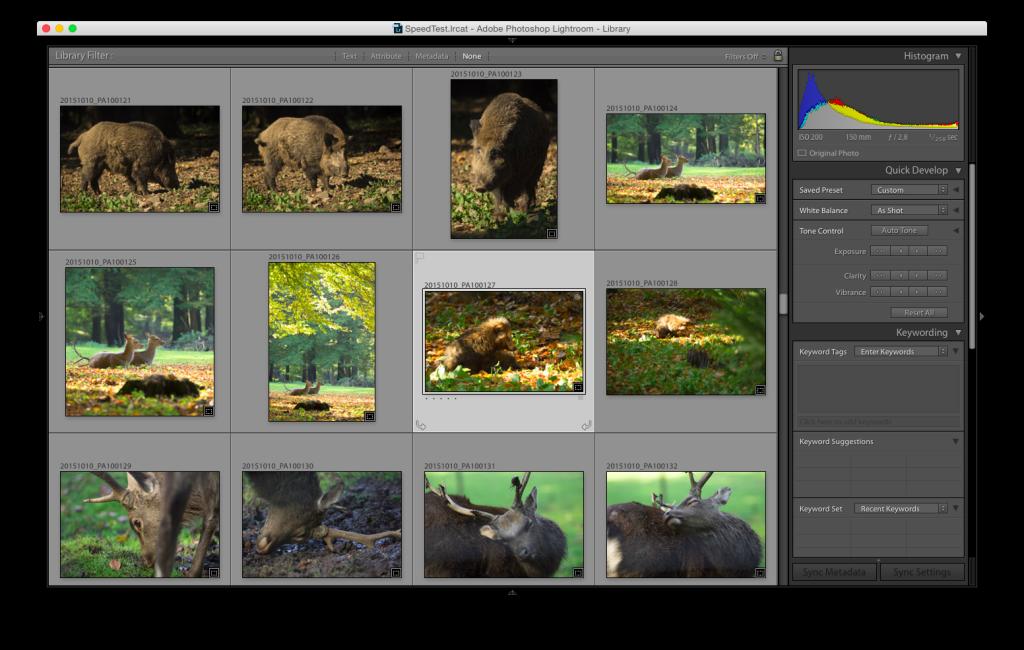 Lightroom 6 – Der Browser zeigt die Bilder wie sie nach dem Zuschnitt aussehen.