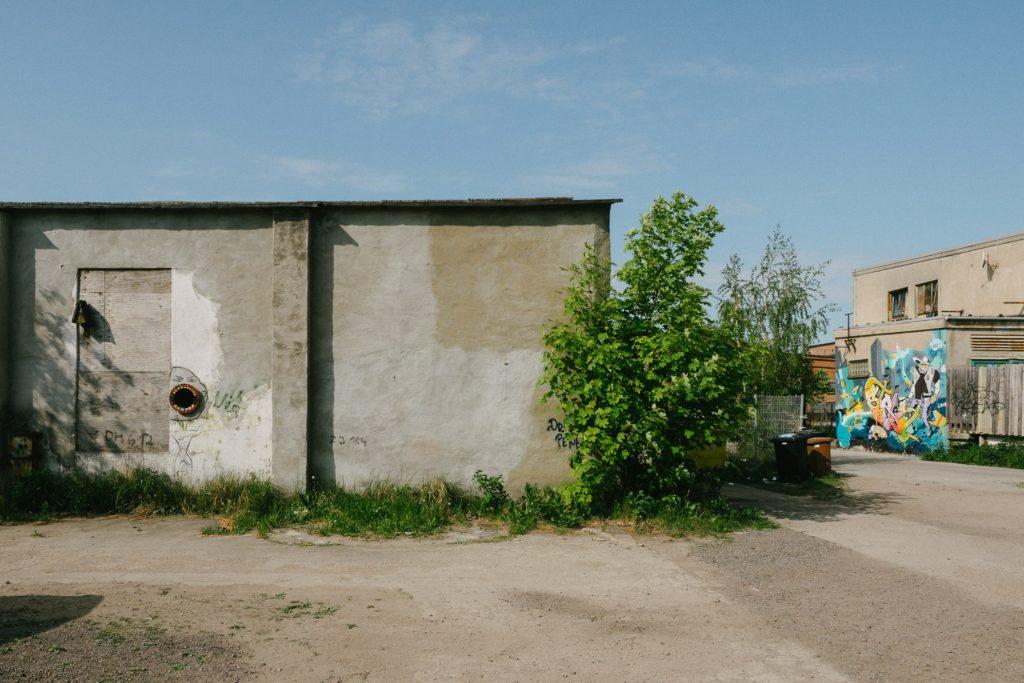 Der Hinterhof vom Hinterhof. Blick von Gusti auf die Parkplätze